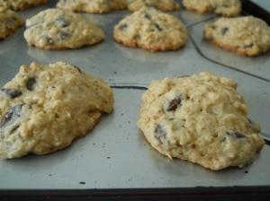 lowfat_chocolate_chip_cookies3_little_house_dunes