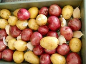 roasted_potatoes1_little_house_dunes