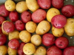 roasted_potatoes_little_house_dunes