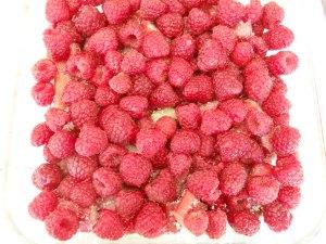 rhubarbraspberrycrumble3_little-house-dunes