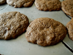 chocolatemintcookies4_little-house-dunes