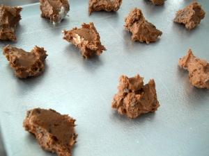 grandmaschocolatecookies5_little-house-dunes