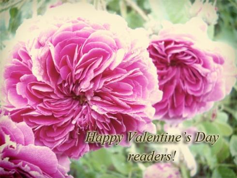 roses1_blog