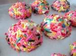 secretcookies12_little-house-dunes